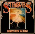 The-Strawbs-Grave-New-World-210475