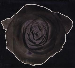 Depeche-Mode-Martyr--Slipcase-383656