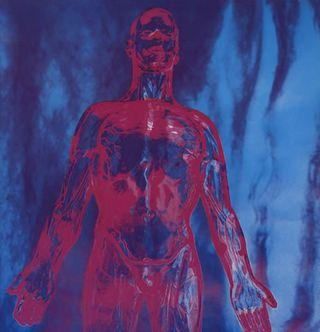 Nirvana-Sliver---Blue-Vin-45907